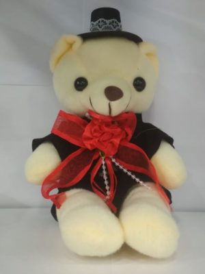 male teddy